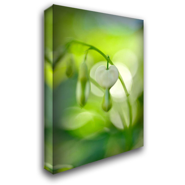 Green Garden II 28x40 Gallery Wrapped Stretched Canvas Art by Arduini, JoAnn