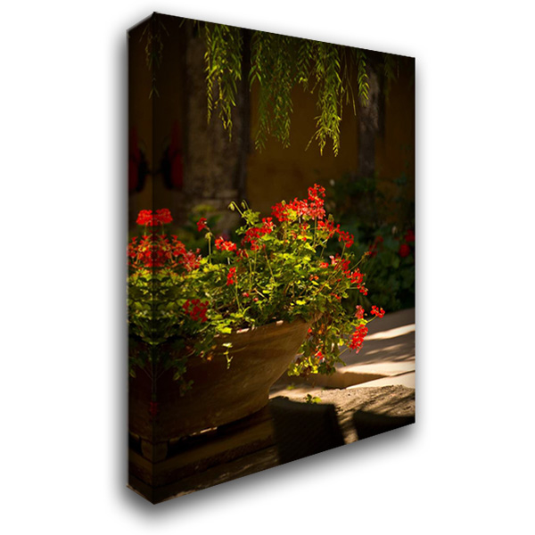 Abbey Flowers III 28x40 Gallery Wrapped Stretched Canvas Art by Arduini, JoAnn T.