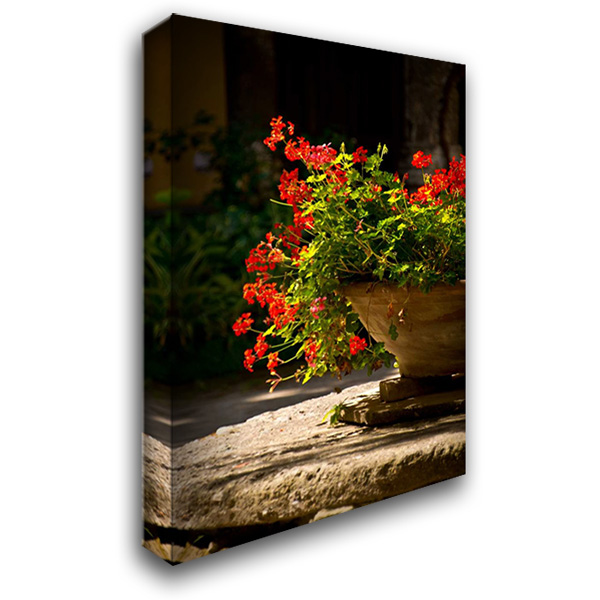 Abbey Flowers IV 28x40 Gallery Wrapped Stretched Canvas Art by Arduini, JoAnn T.