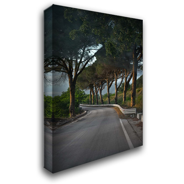 Winding Road 28x40 Gallery Wrapped Stretched Canvas Art by Arduini, JoAnn T.