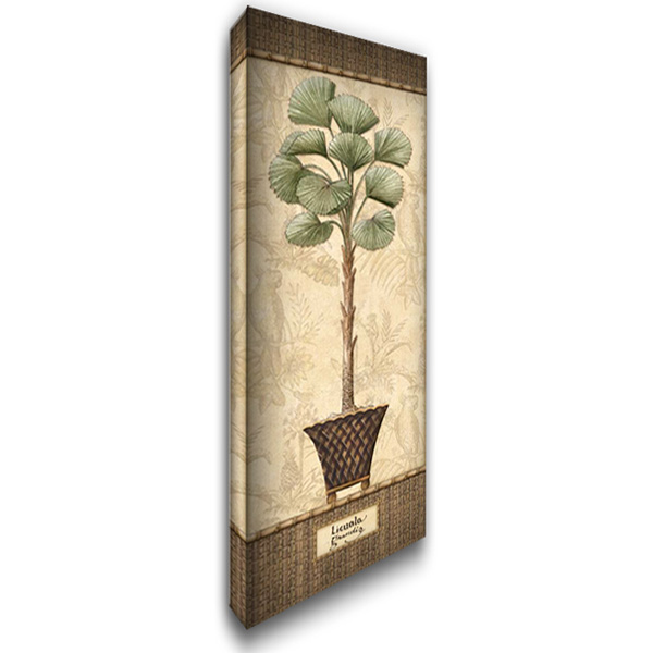Botanical Palm I 19x40 Gallery Wrapped Stretched Canvas Art by Audrey, Charlene