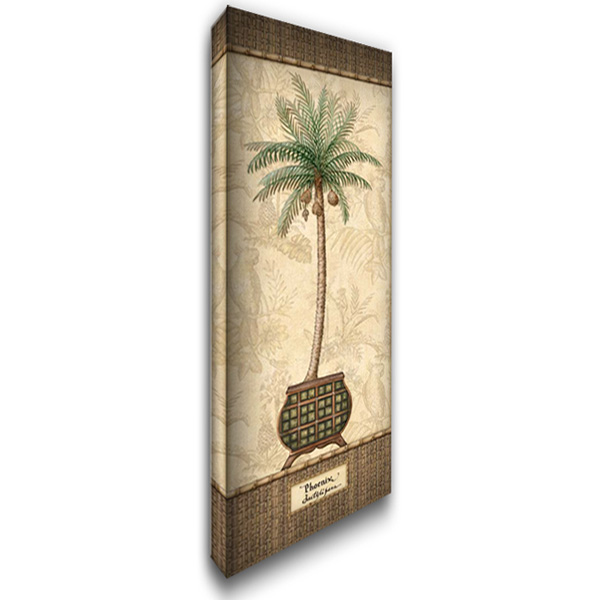 Botanical Palm II 19x40 Gallery Wrapped Stretched Canvas Art by Audrey, Charlene