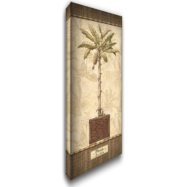 Botanical Palm IV 19x40 Gallery Wrapped Stretched Canvas Art by Audrey, Charlene