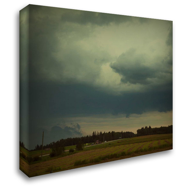 Hall and Hay 28x28 Gallery Wrapped Stretched Canvas Art by Murray, Roberta