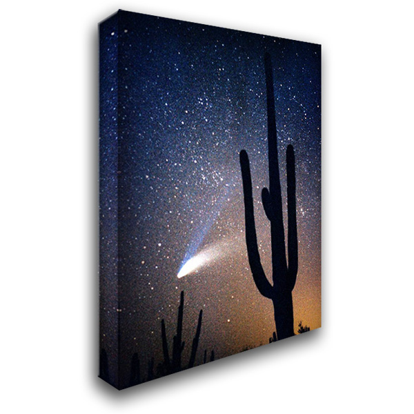 Hale Bop Comet 28x40 Gallery Wrapped Stretched Canvas Art by Taylor, Douglas