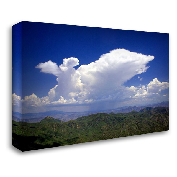 Distant Rain 40x28 Gallery Wrapped Stretched Canvas Art by Taylor, Douglas