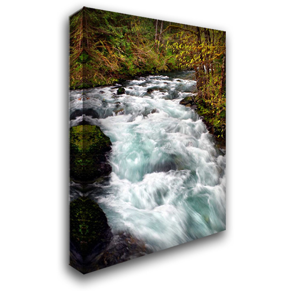 Hamma Hamma River 28x40 Gallery Wrapped Stretched Canvas Art by Taylor, Douglas