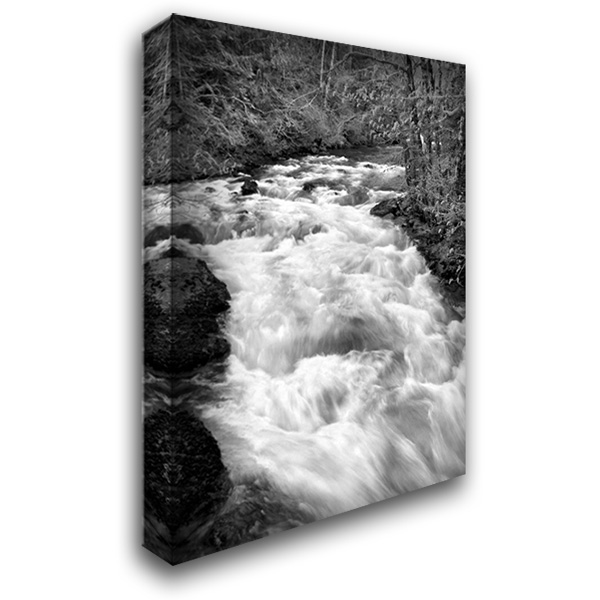 Hamma Hamma River BW 28x40 Gallery Wrapped Stretched Canvas Art by Taylor, Douglas