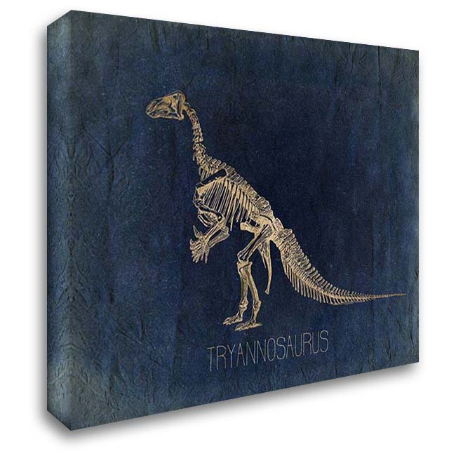 Dino Bones 3 36x28 Gallery Wrapped Stretched Canvas Art by Kimberly, Allen