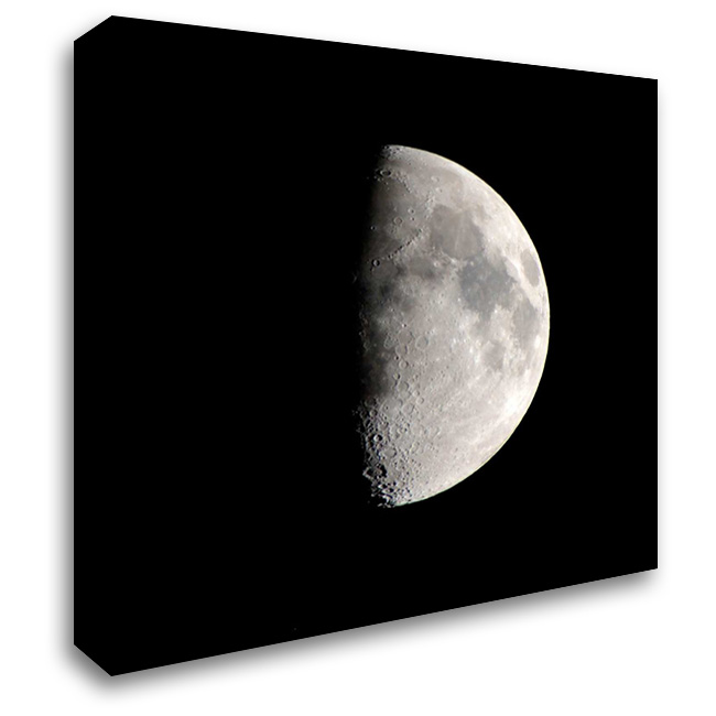 Half Moon 28x28 Gallery Wrapped Stretched Canvas Art by Allen, Kimberly