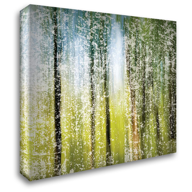 Distressed Forest 28x28 Gallery Wrapped Stretched Canvas Art by Hogan, Melody