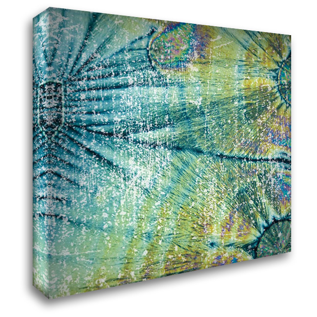 Distressed Coconuts 28x28 Gallery Wrapped Stretched Canvas Art by Hogan, Melody