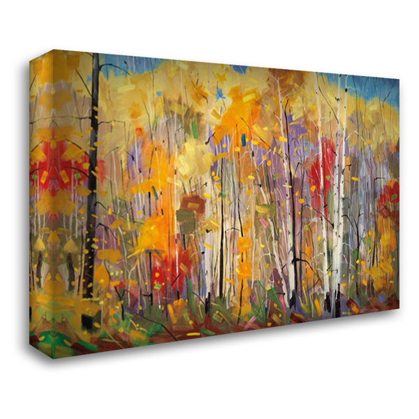 Disco 40x28 Gallery Wrapped Stretched Canvas Art by Forsythe, Graham