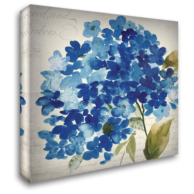 Hampton Hydrangea II 28x28 Gallery Wrapped Stretched Canvas Art by Jensen, Asia