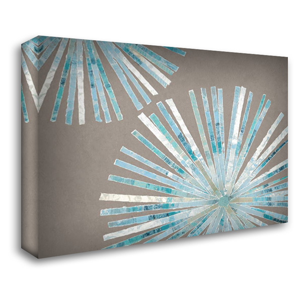 Disk I 37x28 Gallery Wrapped Stretched Canvas Art by Selkirk, Edward