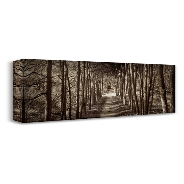 Hampton Gates Promenade - 2 40x16 Gallery Wrapped Stretched Canvas Art by Blaustein, Alan