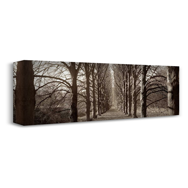 Hampton Gates Promenade - 1 40x16 Gallery Wrapped Stretched Canvas Art by Blaustein, Alan