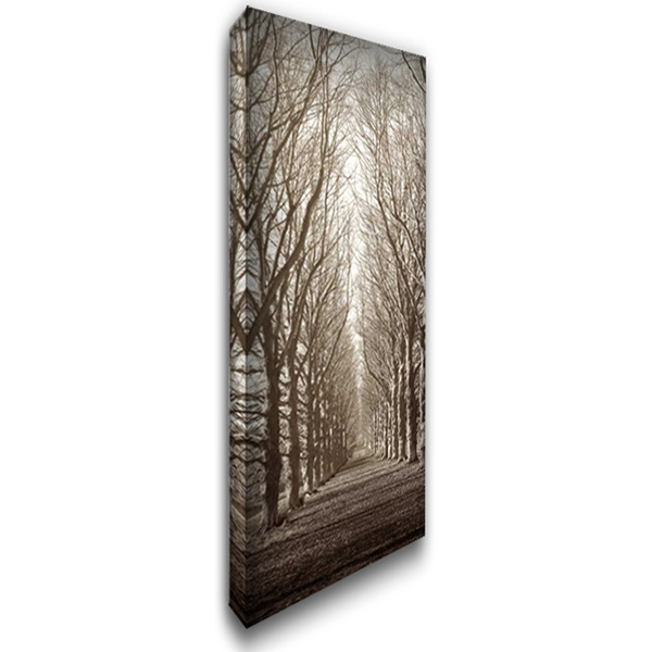 Hampton Gates Promenade 16x40 Gallery Wrapped Stretched Canvas Art by Blaustein, Alan