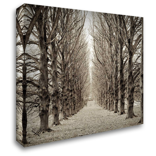 Hampton Gates Promenade - 3 28x28 Gallery Wrapped Stretched Canvas Art by Blaustein, Alan
