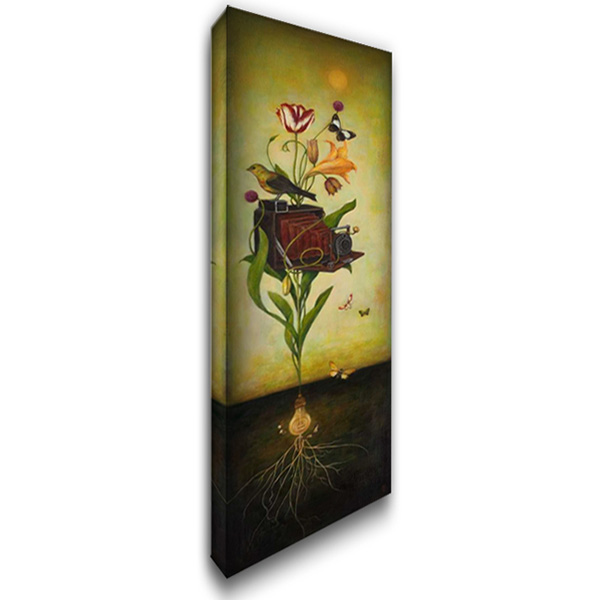 Photosynthesis Bliss 16x40 Gallery Wrapped Stretched Canvas Art by Huynh, Duy