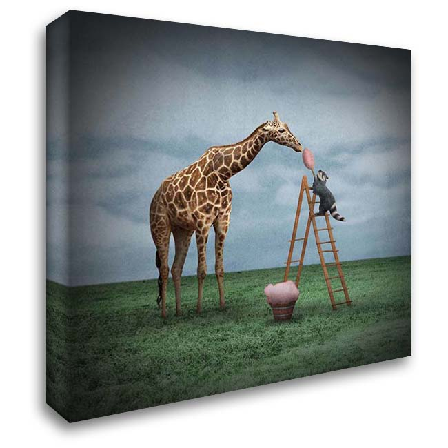 Cotton Candy 28x28 Gallery Wrapped Stretched Canvas Art by Noblin, Greg
