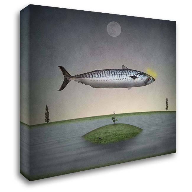 Holy Mackerel 28x28 Gallery Wrapped Stretched Canvas Art by Noblin, Greg