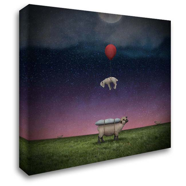 Soft Landing 28x28 Gallery Wrapped Stretched Canvas Art by Noblin, Greg
