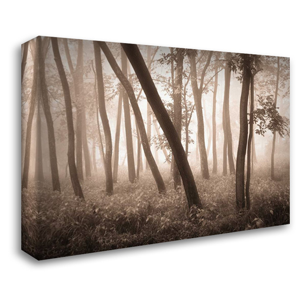 Reticent Woods 40x28 Gallery Wrapped Stretched Canvas Art by Svibilsky, Igor