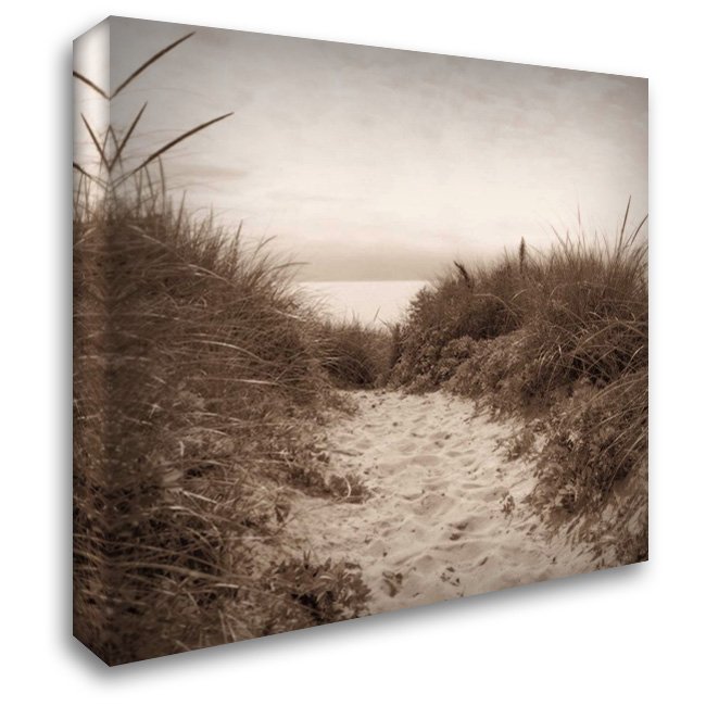 Dune Path 28x28 Gallery Wrapped Stretched Canvas Art by Triebert, Christine