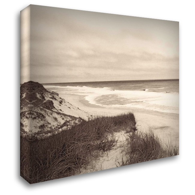 Wellfleet Dune 28x28 Gallery Wrapped Stretched Canvas Art by Triebert, Christine