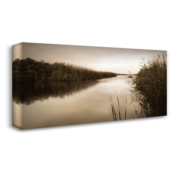River Reeds 40x22 Gallery Wrapped Stretched Canvas Art by Triebert, Christine