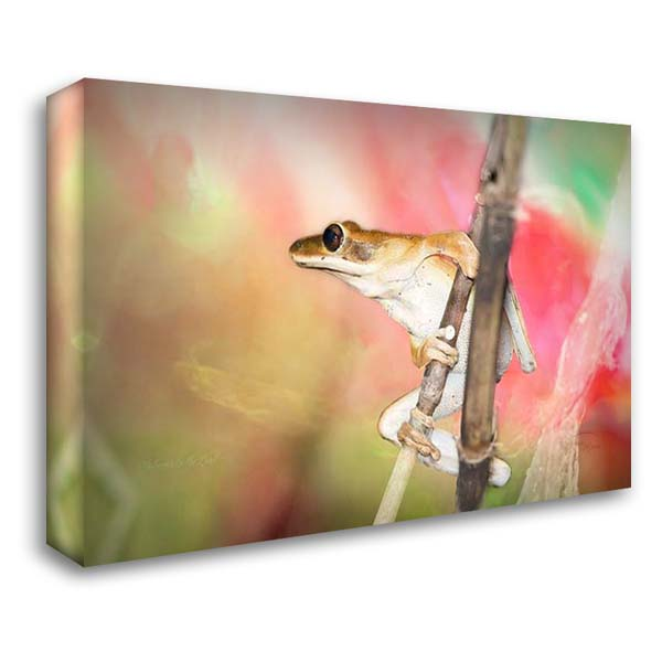 Hangin Around 40x28 Gallery Wrapped Stretched Canvas Art by Murdock, Ramona