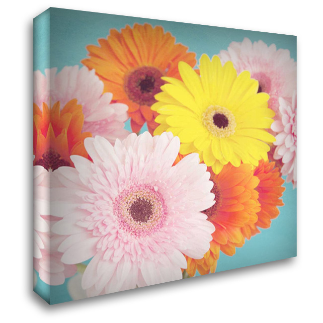 Happy Daisies 28x28 Gallery Wrapped Stretched Canvas Art by Susannah Tucker Photography
