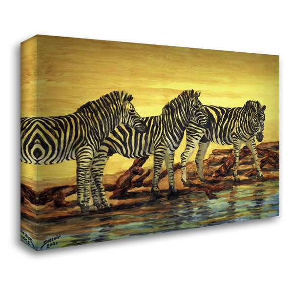 Sunset stripes 37x28 Gallery Wrapped Stretched Canvas Art by Blair, David