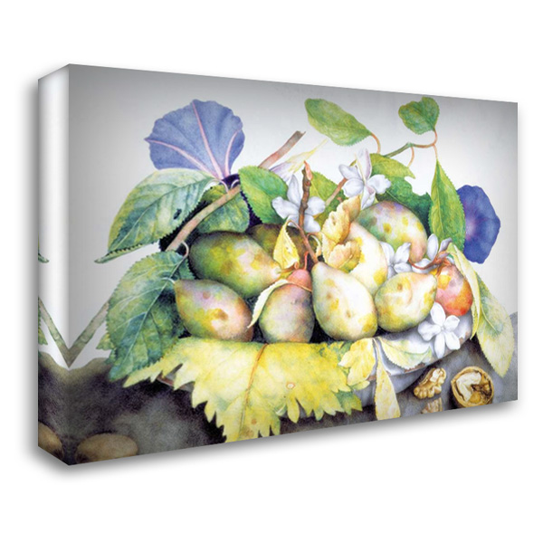 Dish of Plums, Jasmine and Walnuts 40x28 Gallery Wrapped Stretched Canvas Art by Garzoni, Giovanna