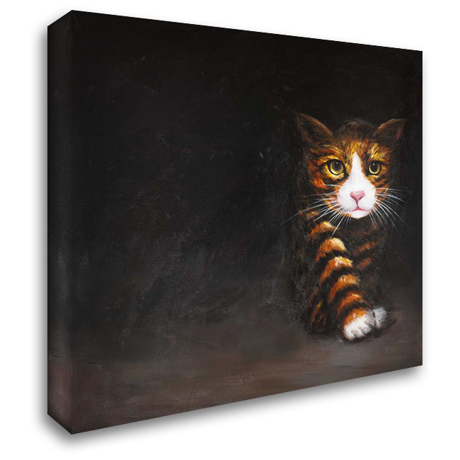 Discreet Cat 28x28 Gallery Wrapped Stretched Canvas Art by Atelier B Art Studio