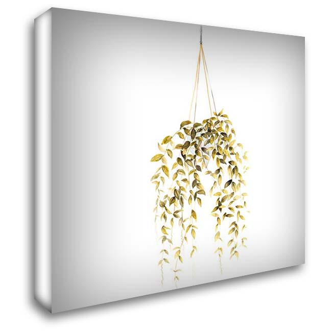 HANGING PLANT 28x28 Gallery Wrapped Stretched Canvas Art by Atelier B Art Studio